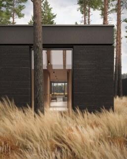 Nero House Architecture